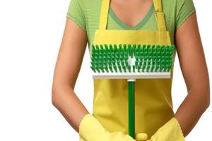 organik-temizlik