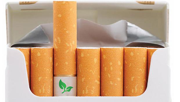 icinden-cicek-cikan-sigara-izmariti