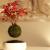 Japon Firma Havada Asılı Duran Ağaçlar Satıyor