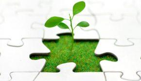 İşinizi Büyütmek için Uygulayabileceğiniz 5 Yöntem